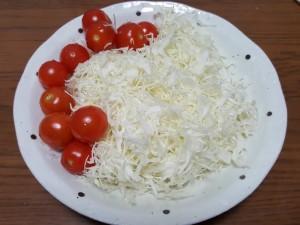 20160113_野菜 100g
